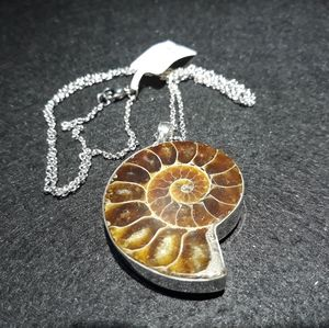 Other - Genuine Fossil Pendant with Necklace P10